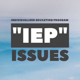 Individualized Education Program (IEP) Issues
