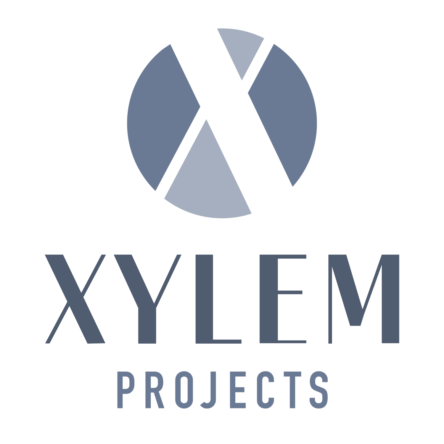 Xylem Projects