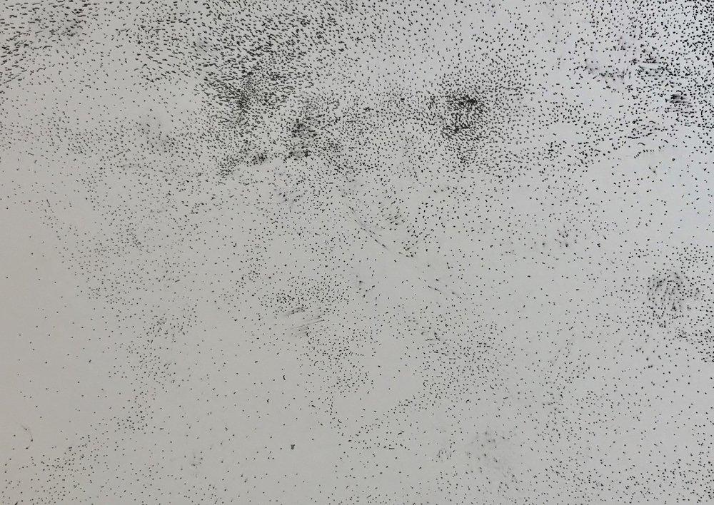 Untitled, 2018, paper, 9 in x 14 in