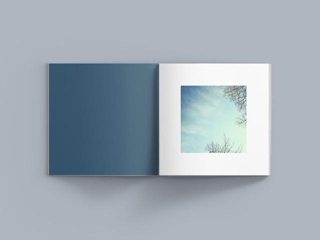 JiayinYu_LightBook_7.jpeg