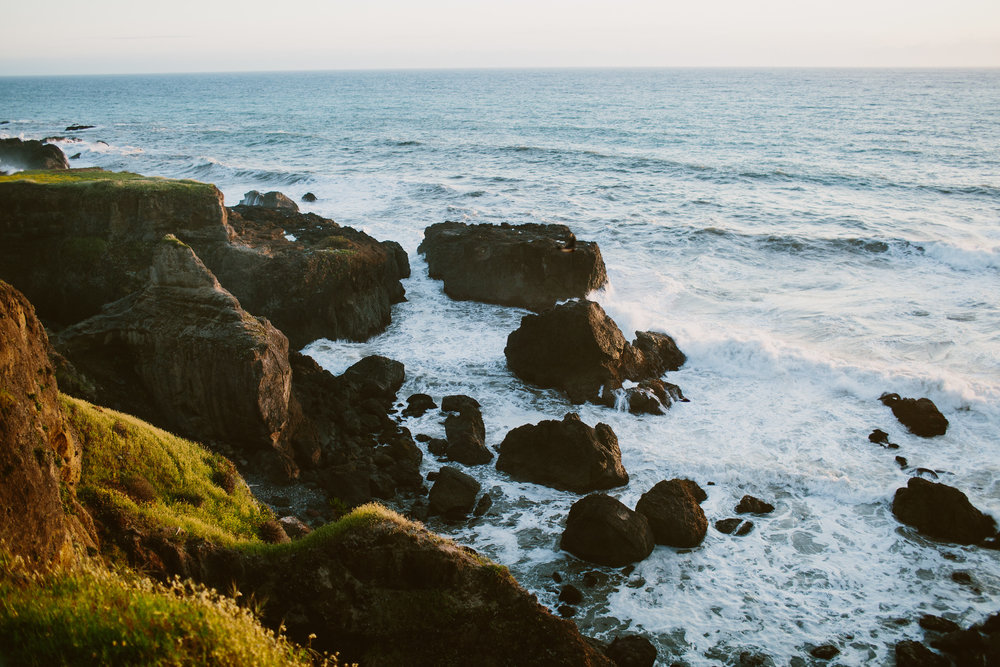 California-Lost-Coast-Wedding482.jpg