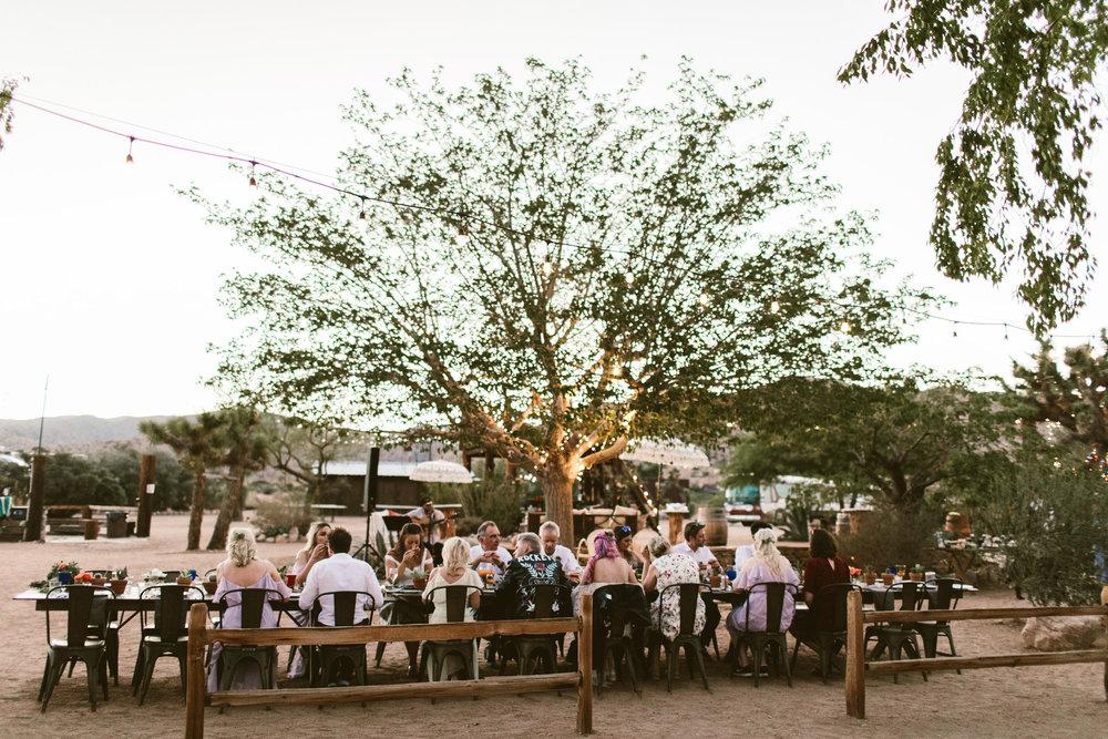zoe-london-wedding-joshua-tree-54.jpg