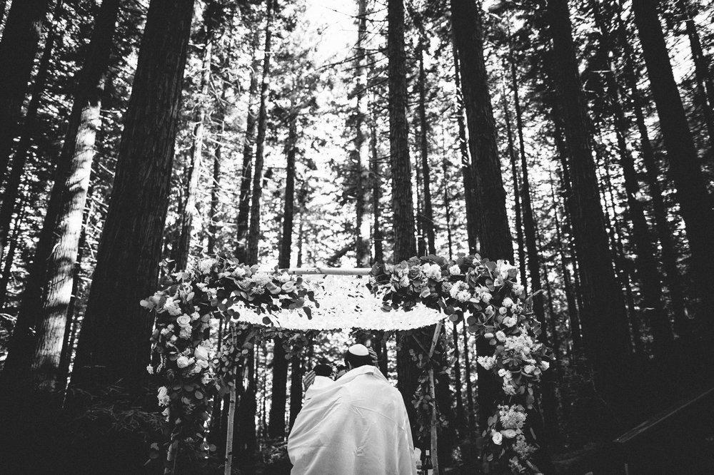 Westlund_Photography-56-1.jpg