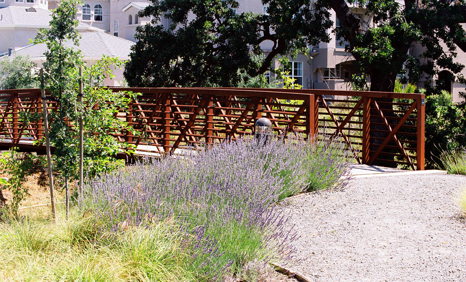 multifamily housing creek restoration nature trails.jpg