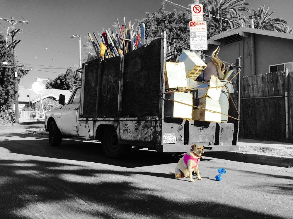 Sanford & Puggle (LA, 2015)