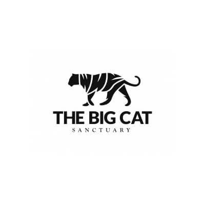 big_cant_sanctuary_logo_20x24_studio_berlin.jpg