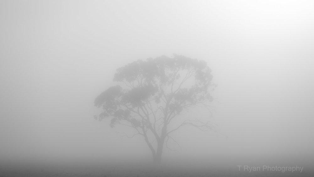Southern Midlands Tasmania