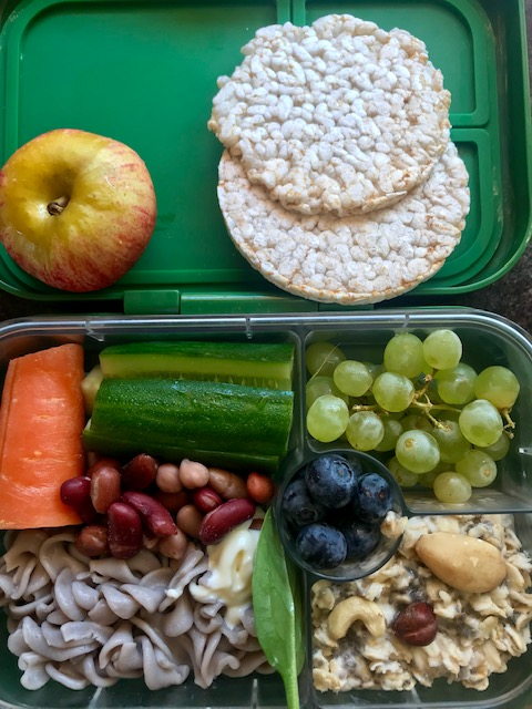 Apple, rice cakes, carrot, cucumber, buckwheat pasta, 4 bean mix, blueberries, grapes, overnight oats w/nuts & seeds + mayo. -