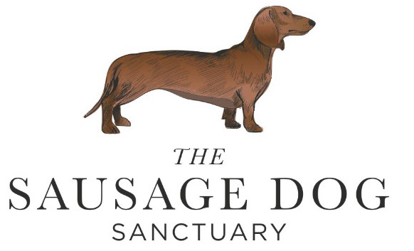 Sausage Dog Sanctuary