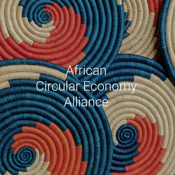 PACE-Projects-African-Circular-Economy-Alliance-Thumb-700px-v1.jpg
