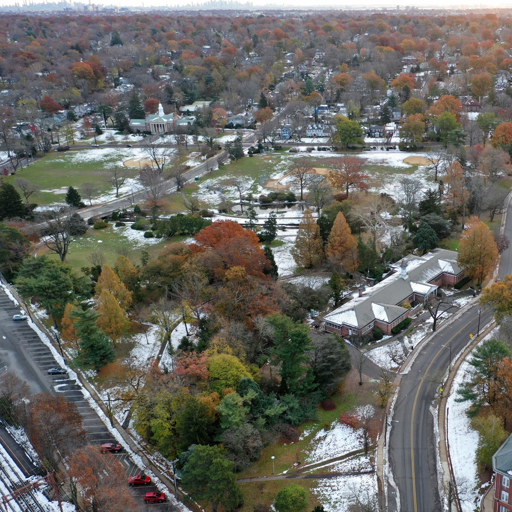 ABOUT MAPLEWOOD -