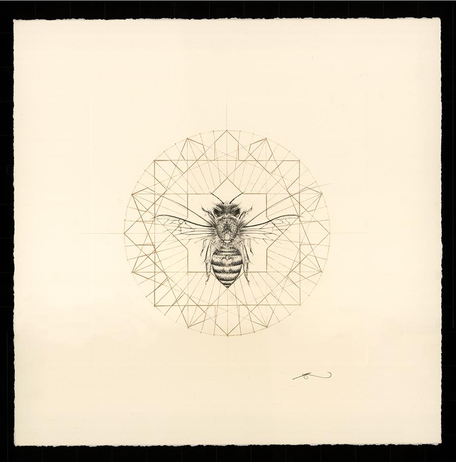 Jessica_Albarn-London-honey-company4.jpg