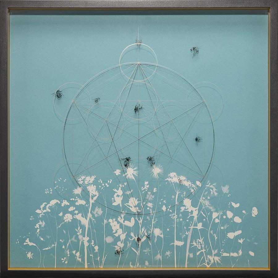 The-Blue-Meadows-of-Eve-3.jpg