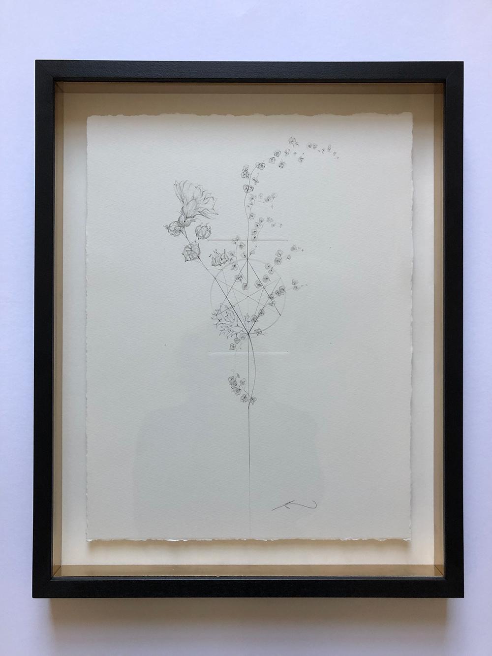 Jessica-albarn-2-meadow-flowers-1.jpg