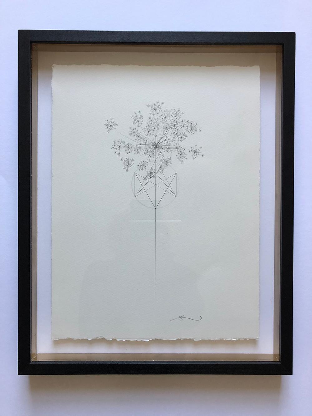 Jessica-albarn-2-meadow-flowers-3.jpg