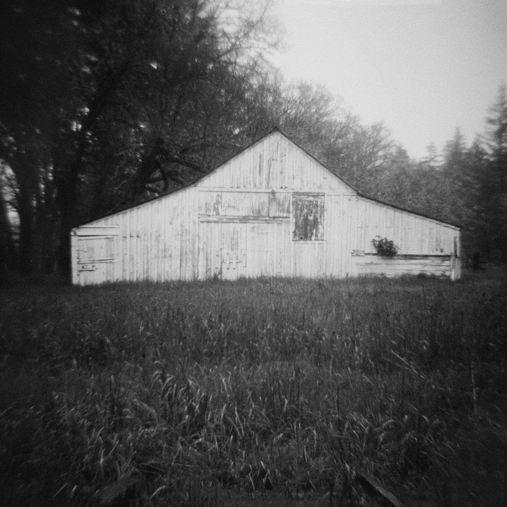 Untitled (white barn), 2017