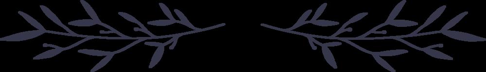 divider_3_purple_trn.png
