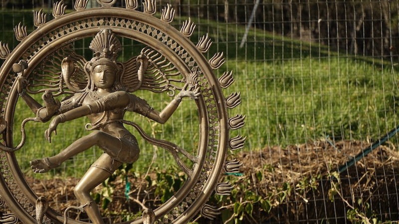 DSC01673 bronze.jpg
