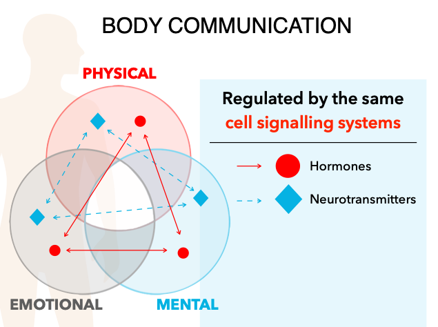 Cell signaling for performance image 2.png