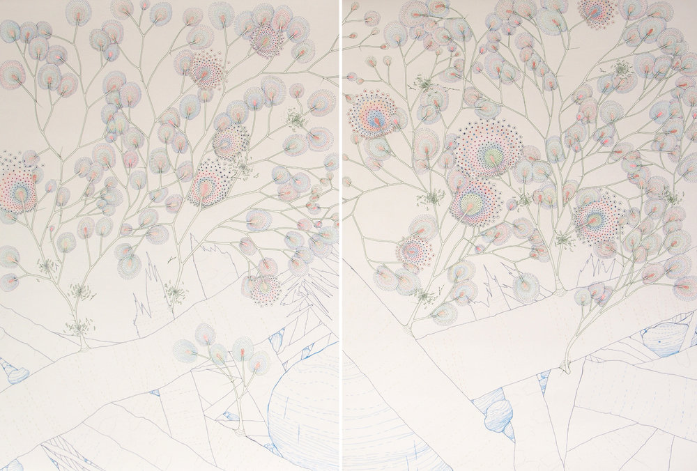 Tumble Thicket. Ink, colored pencil and graphite on paper.