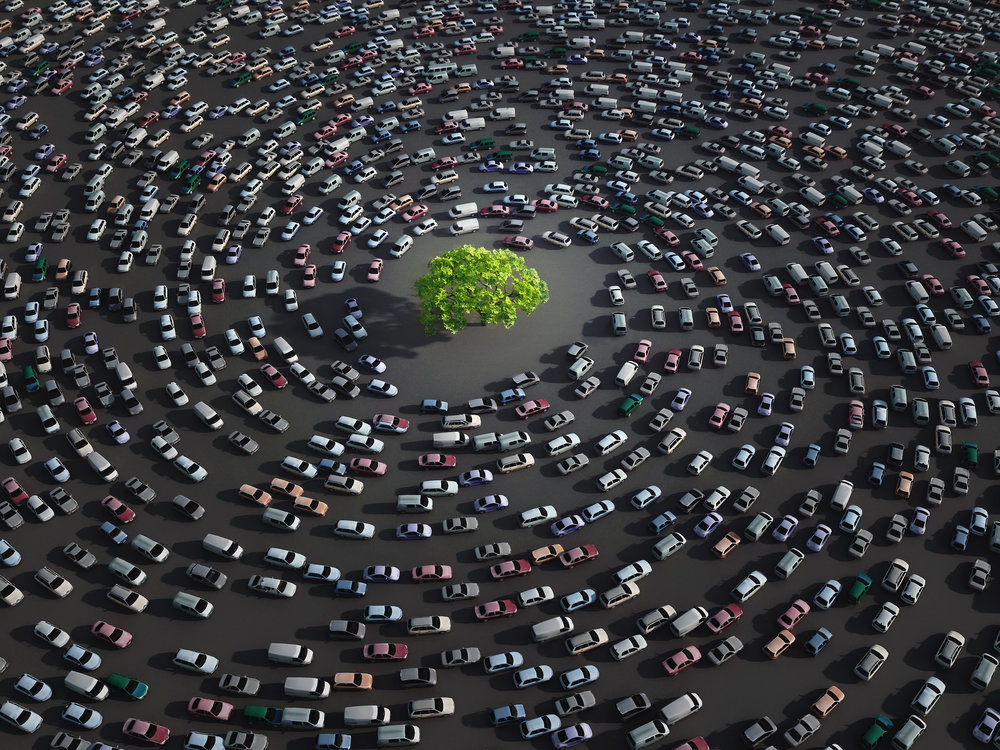 Metaphorically speaking conventional wisdom is the traffic that people sit in going the same place slowly everyday.
