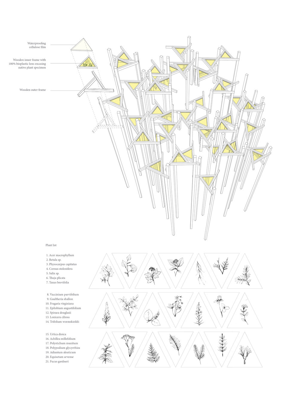Sukkot Anatomy DIAGRAMS 1875x2500.jpg
