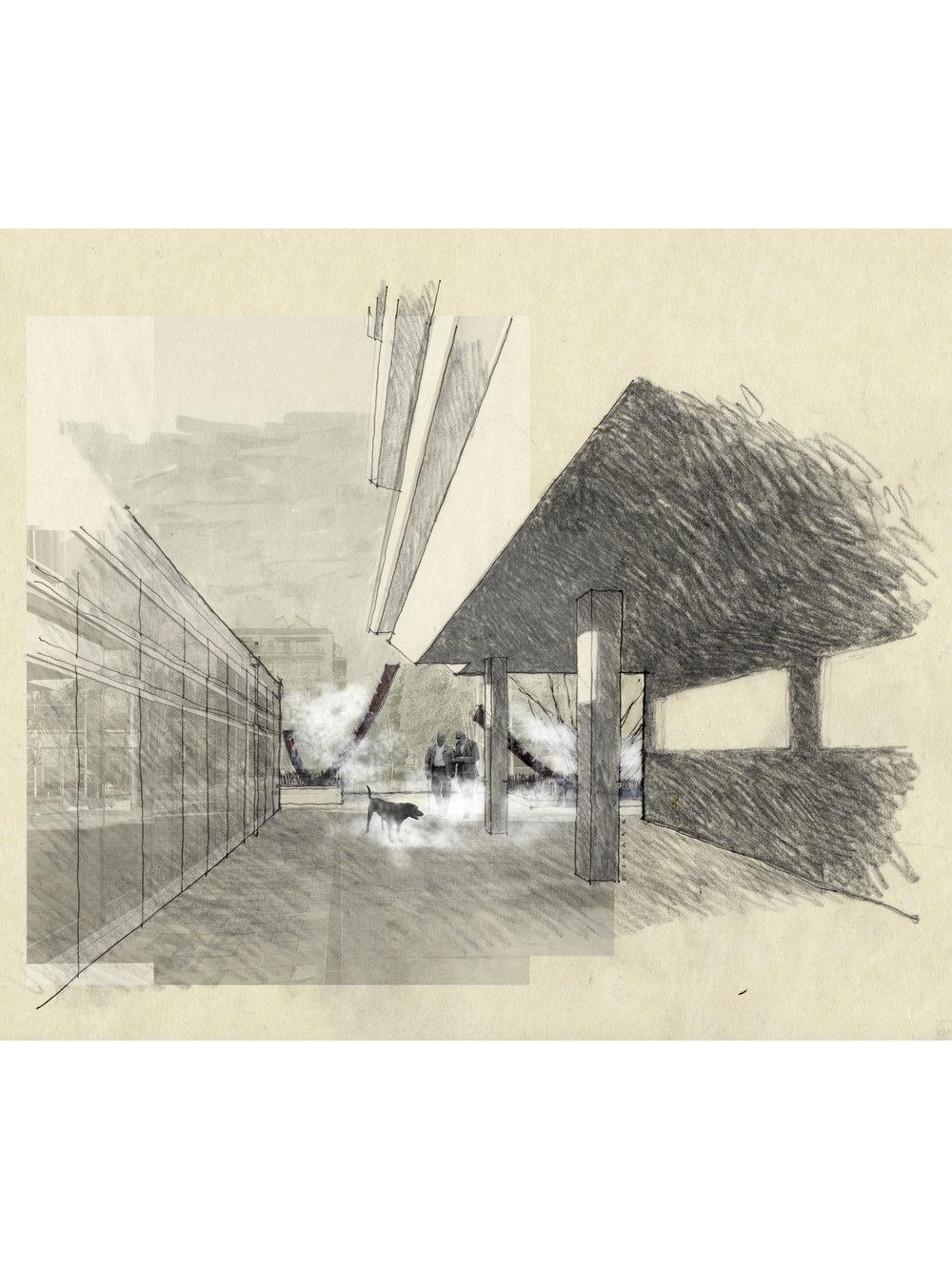 Fog Scene 2-1875x2500.jpg
