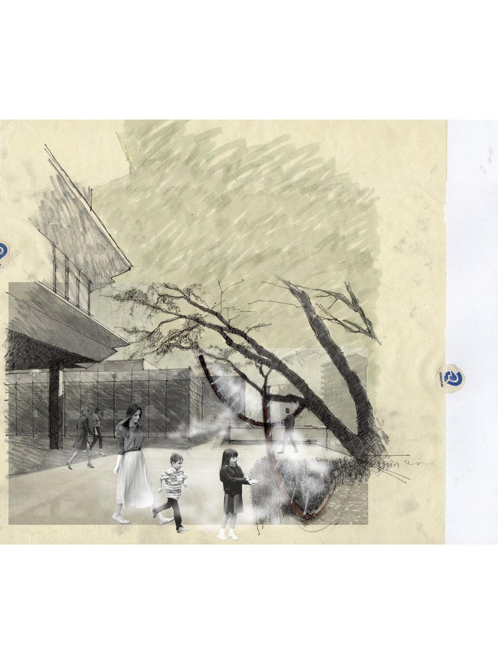 Fog Scene 3-1875x2500.jpg