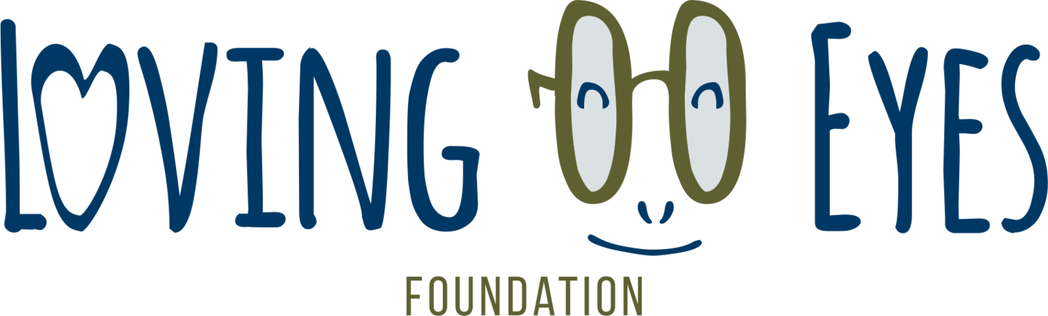 Loving Eyes Foundation