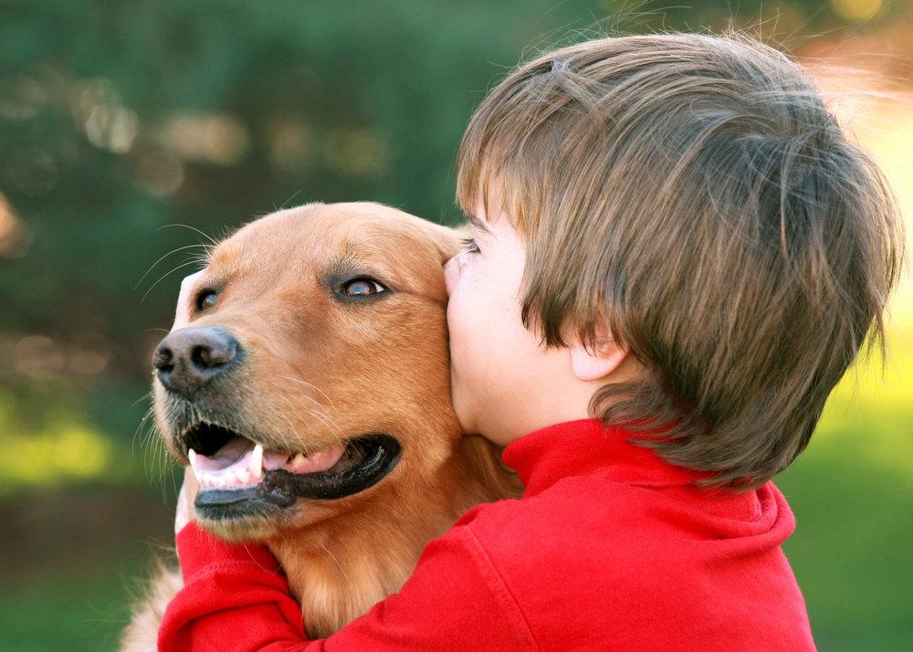 service-dog-kid.jpeg