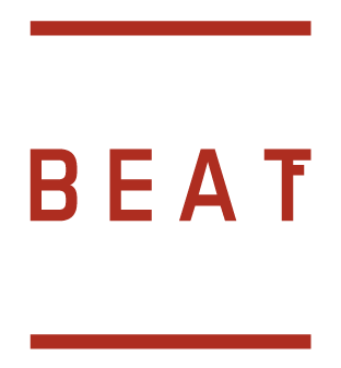 Fake Beat Real
