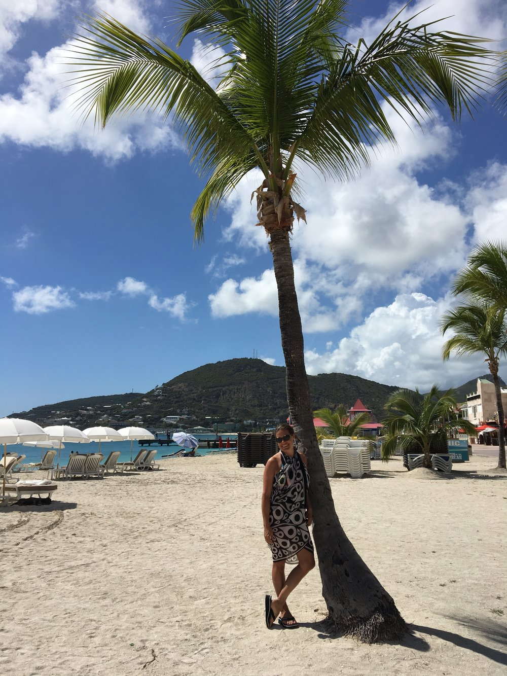Palm Tree on the Beach - St. Martin - 55 by 55 Travel