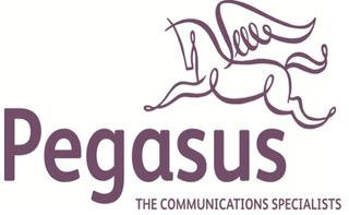 Pegasus Logo 17.jpeg