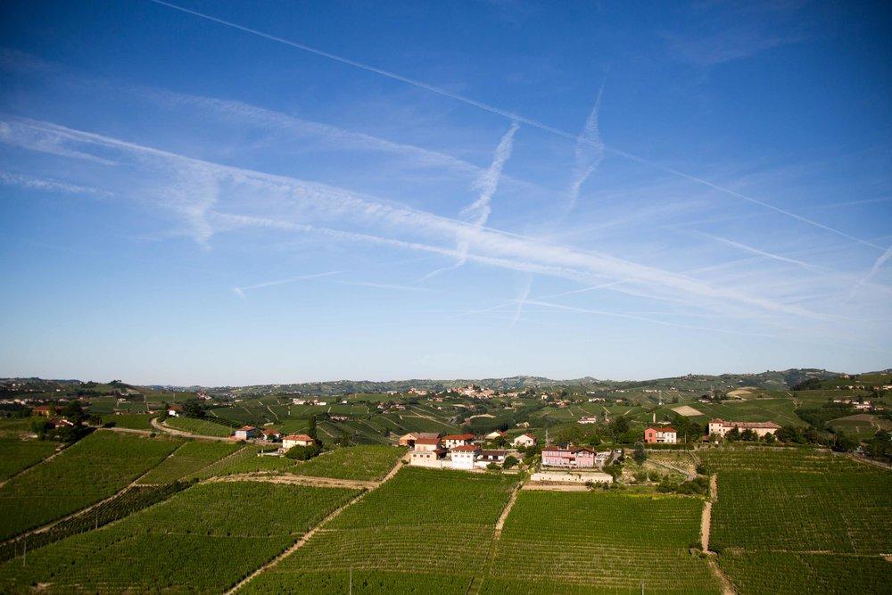 barbaresco wine tour vineyards