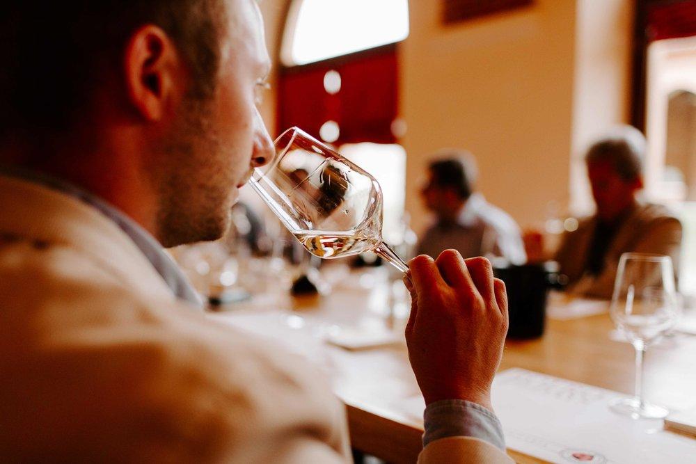 langhe wine tasting tour