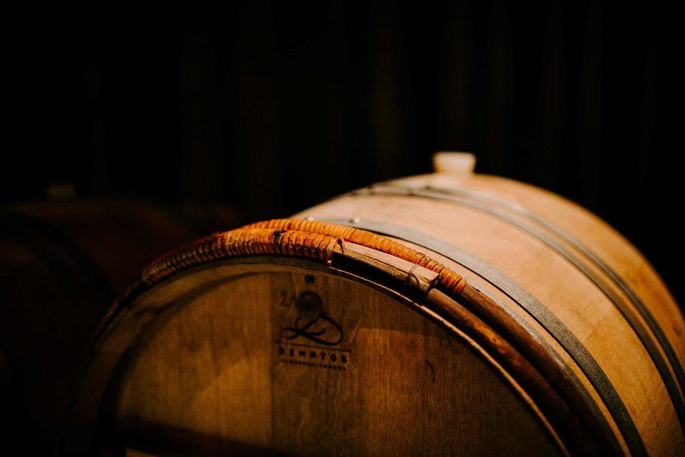 barolo barrel tasting