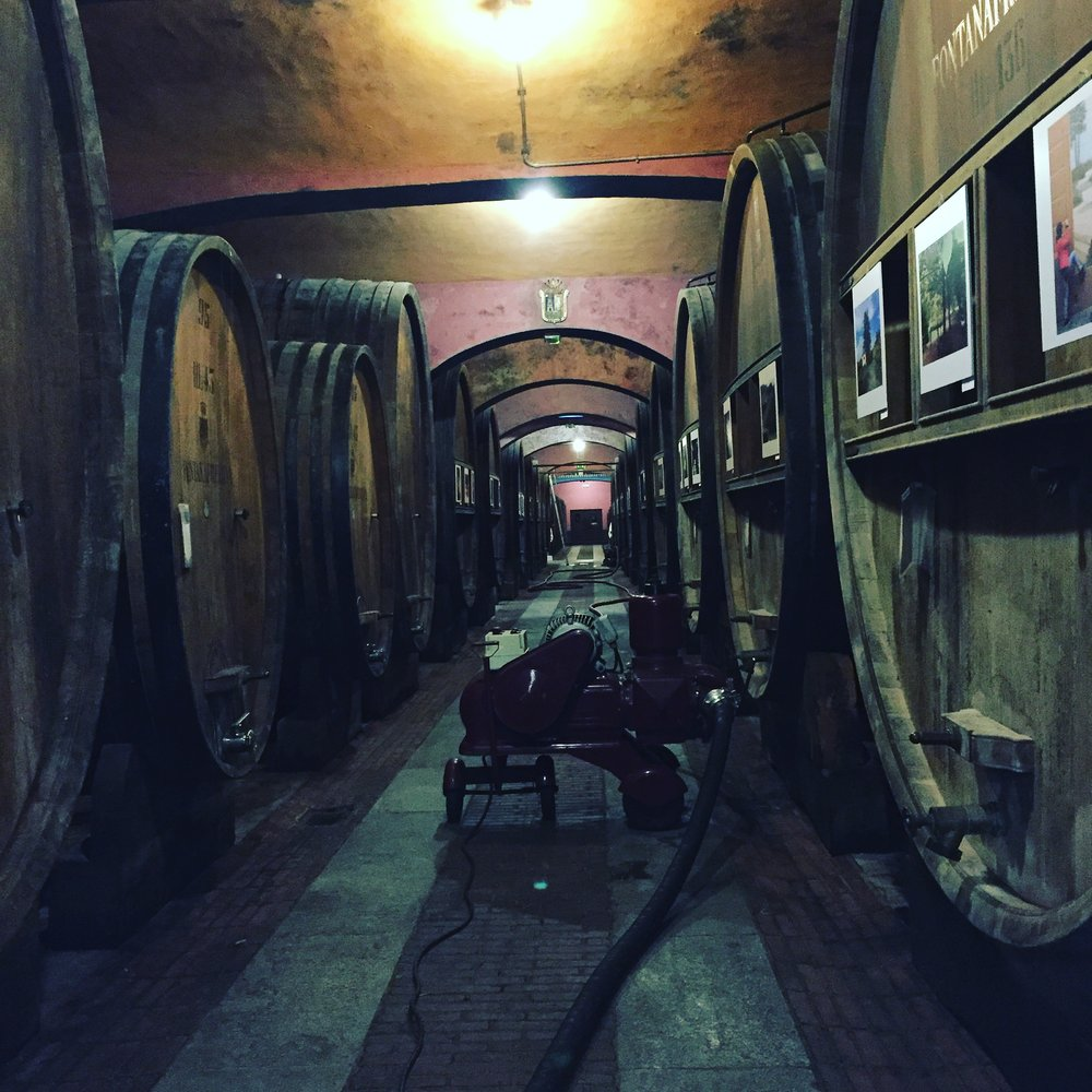 Barolo Winery Fontanafredda