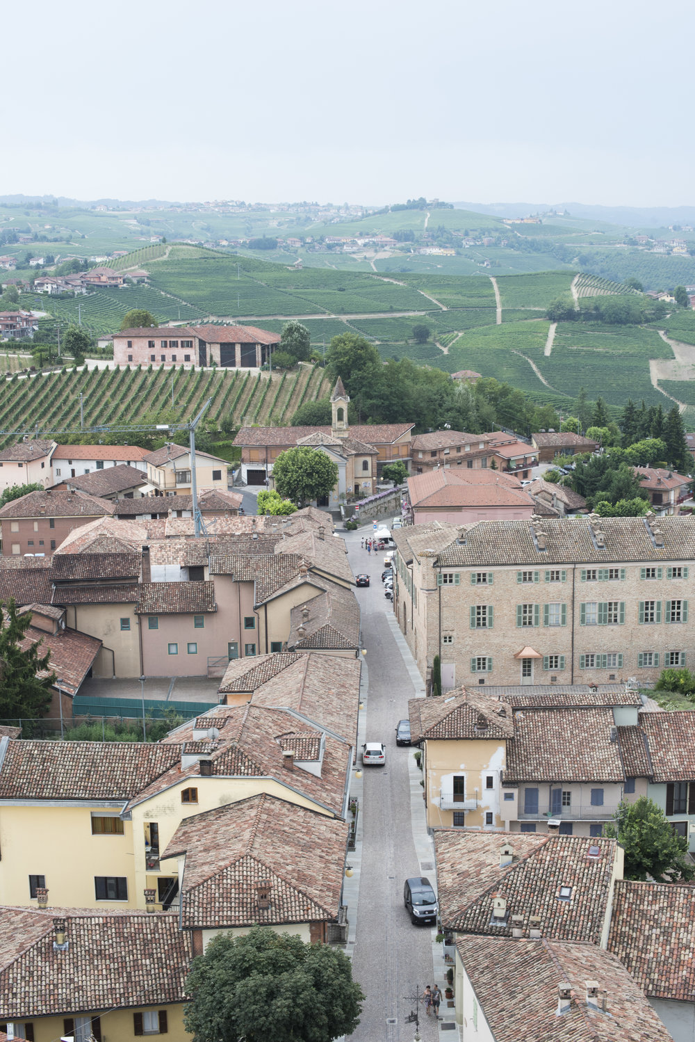Barbaresco Wine Village