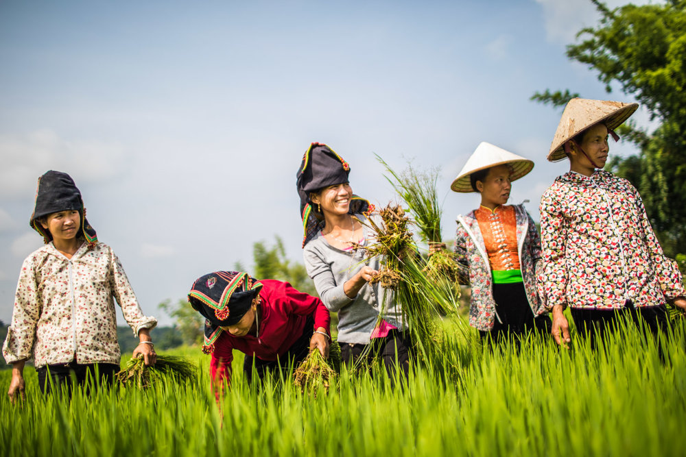 Christian Berg is a Vietnam based documentary and travel photographer