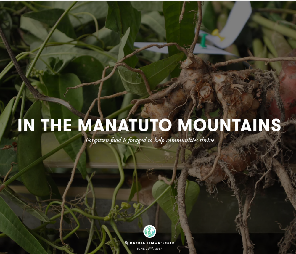 In the Manatuto Mountains.PNG