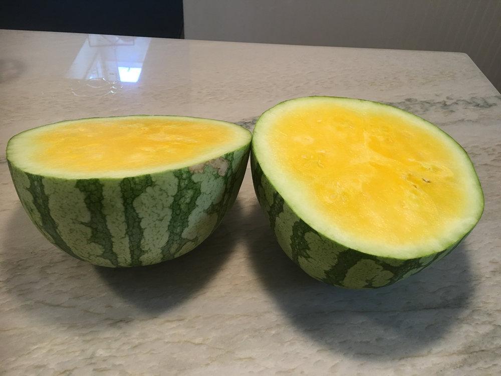 Farm fresh yellow watermelon.jpg