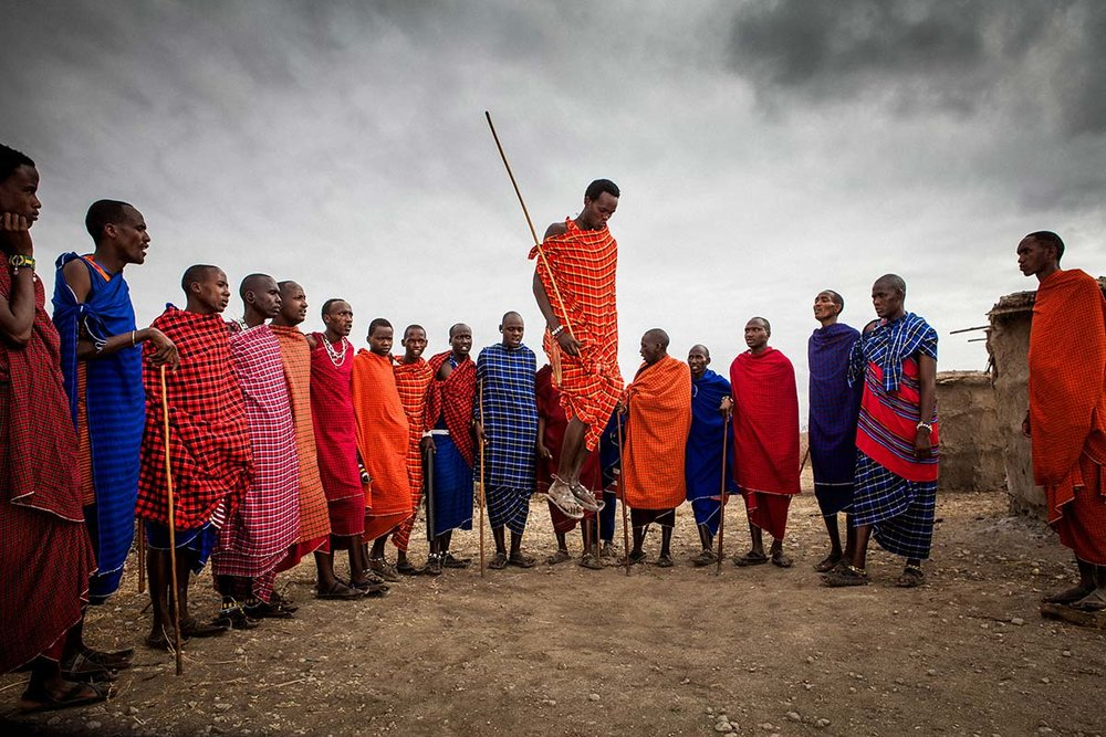 create-the-change-filip-c-agoo-lion-serengeti-tanzania-photo-art-1800px.jpg