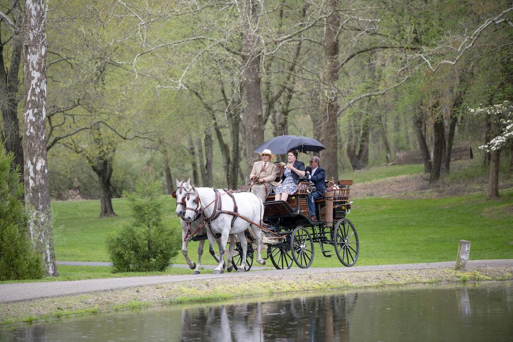 - Carriage Rides through Nottingham Park