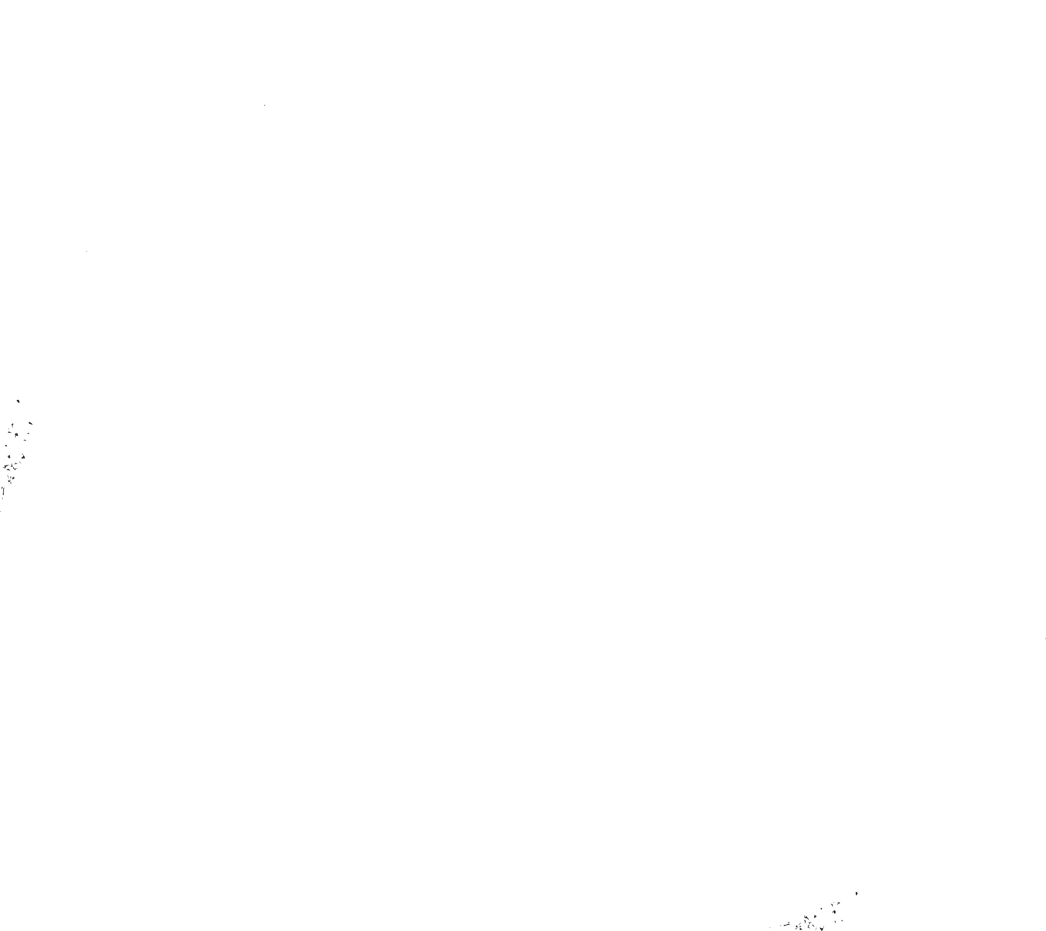 BROOKLYN CRAFTED