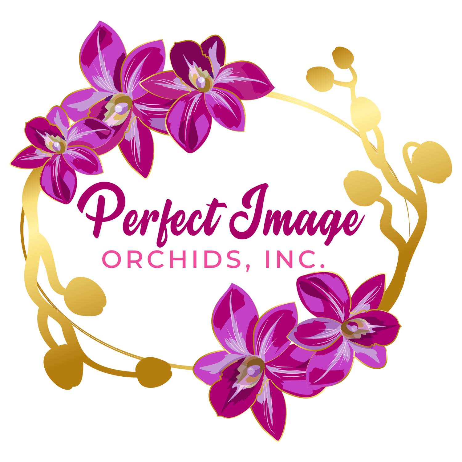 Perfect Image Orchids, Inc.