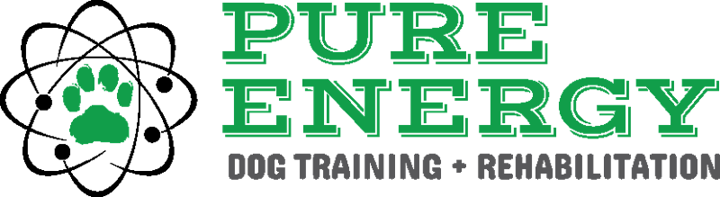 Pure Energy Dog Training