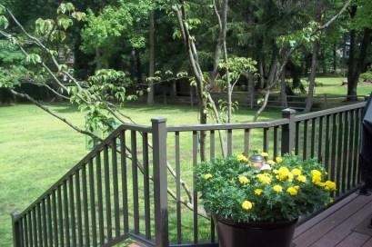 railings94.jpg