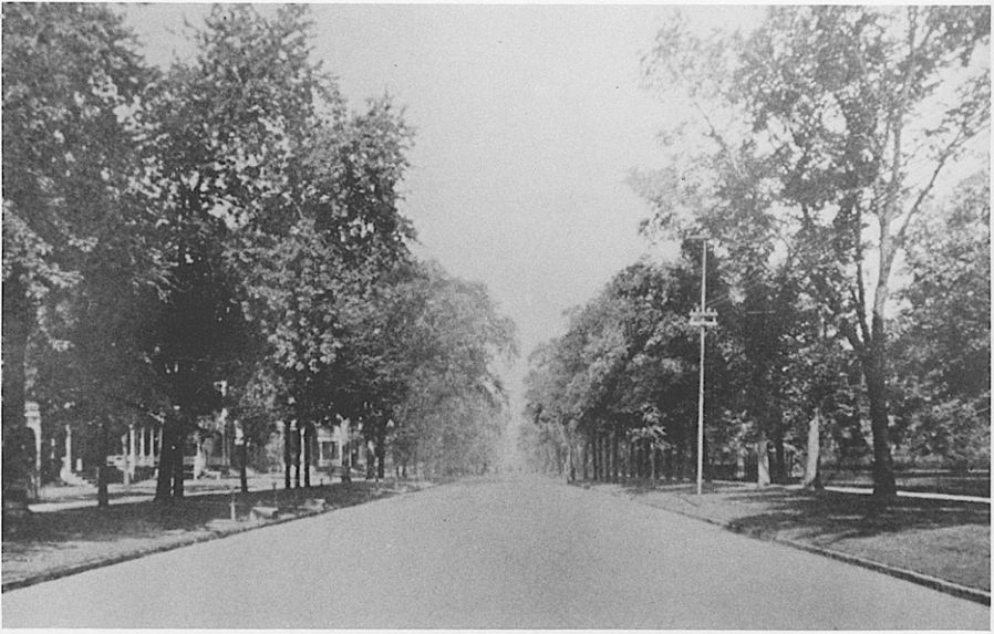 Mark Twain called it the most beautiful street in the world, and his view included the avenues of New York, Paris, and St. Petersburg. A quadruple row of American elms lined the street for four miles. The wrought-iron fences were often works of art. Note also all the steps to assist entrance into carriages, as well as the hitching posts.