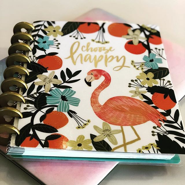 So grateful for this gem of a planner! If you're like me and love to be organized but can't find that planner that really does it for you, check out The Happy Planner. Go to Hobby Lobby, Michaels, or any office supply store and they have a whole section for The Happy Planner. You choose the layout, size, theme and any additions you want to add. They also have planners for helping keep track of your budget, exercise plans, and more!  Plus, with all the awesome sales at these stores you can create a custom planner without a big price. If one of your 2019 goals is to get organized, start with a daily planner! . . . . . #grateful #timeblocking #planneraddict #planner #gettingorganized #thehappyplanner #getorganized #dailyroutine #hobbylobby #michaels #officedepot #officemax #madisonbustamante #entrepreneur