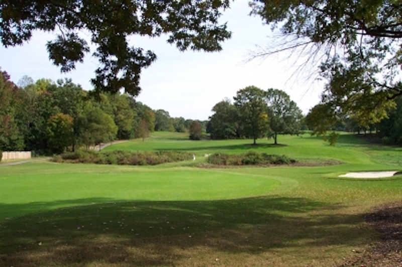 The twin trees on 12, as viewed from behind the green (image courtesy of  Golf The United States )